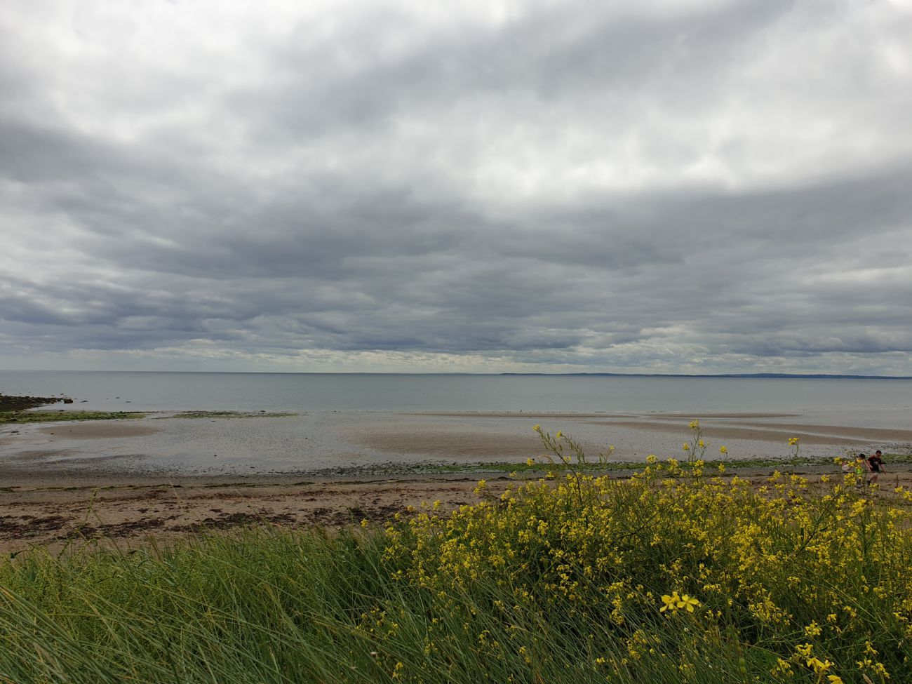 View from Templetown Beach towards Lease Area 20190711 140022
